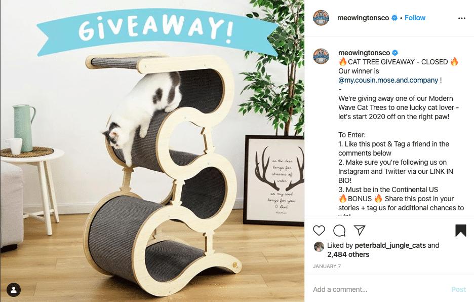 Meowingtons - Run an Instagram Giveaway