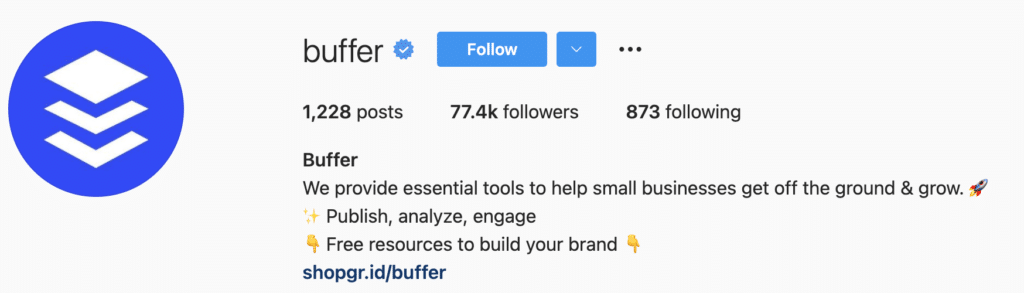 b2b SaaS Startup Instagram Bio Idea