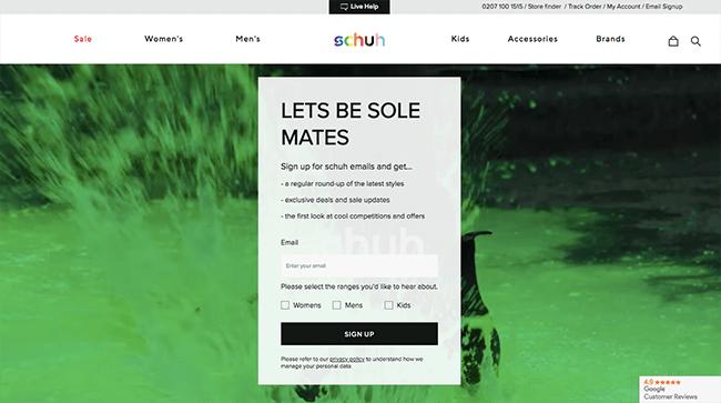 SaaS Newsletter Form